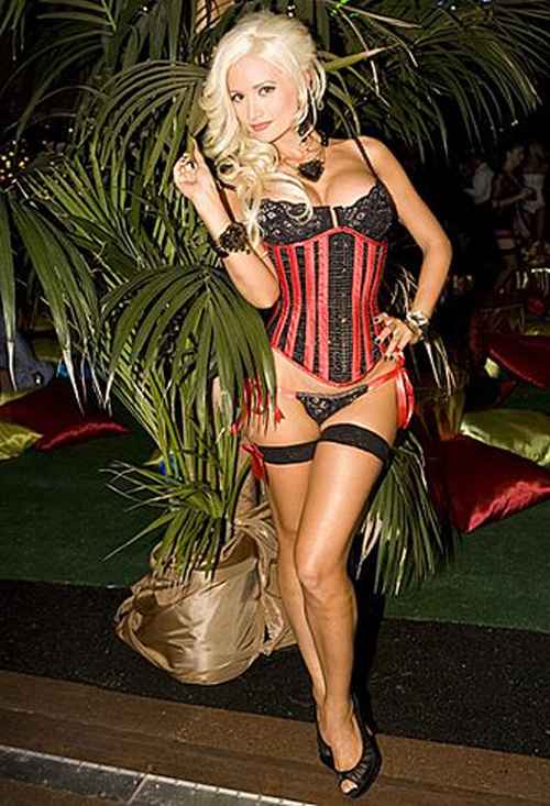 Holly Madison in lingerie