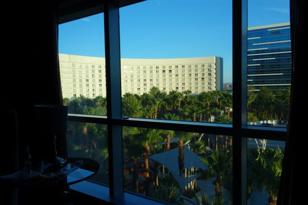 Hard Rock Hotel and Casino, Las Vegas-DSC08446