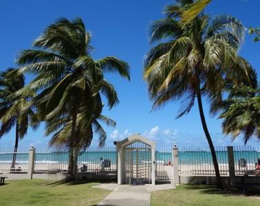 Gateway to paradise-DSC02018