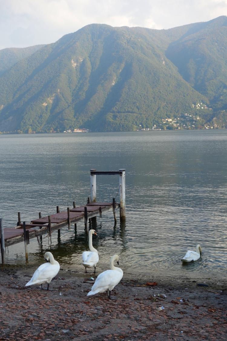 Lugano, Switzerland-DSC02066