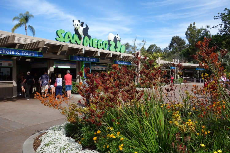 San Diego Birthday Trip 2015-DSC04871