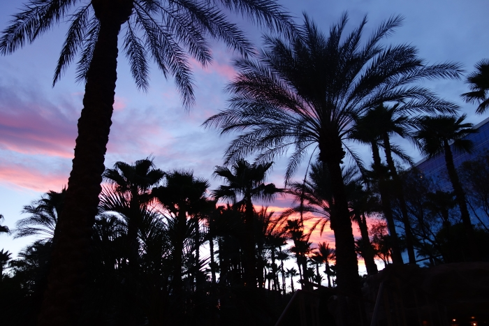 Pink Taco, Las Vegas-2-DSC00106