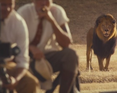 wildest dreams music video-lion