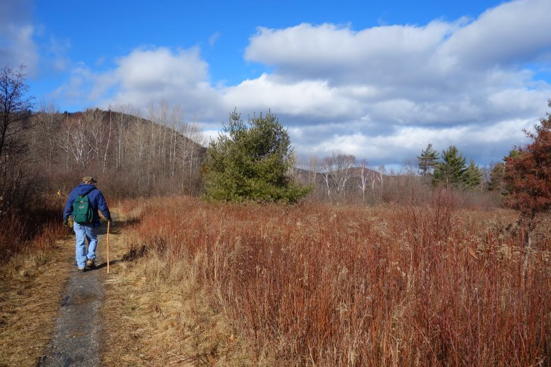 Day Hiking the Appalachian Trail, Connecticut-DSC08415