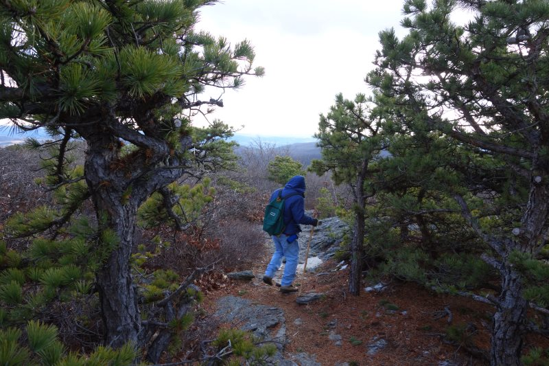 Day Hiking the Appalachian Trail, Connecticut-DSC08533