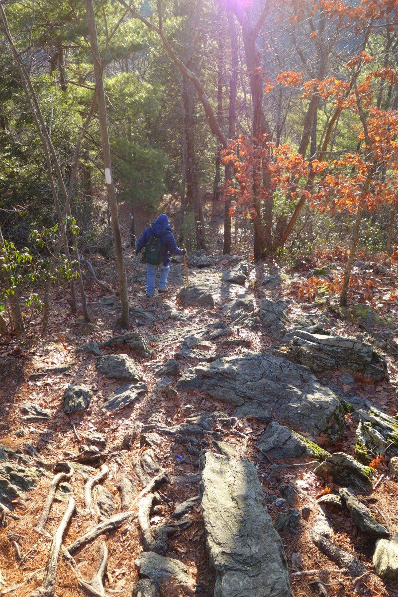 Day Hiking the Appalachian Trail, Connecticut-DSC08551