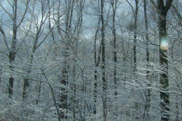 winter drive ct-DSC04467