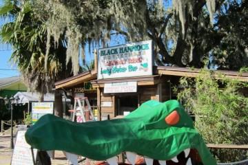 Black Hammock Airboat Ride In Florida_9534