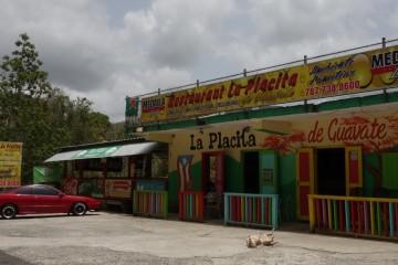 Lechonera Puerto Rico-DSC08342