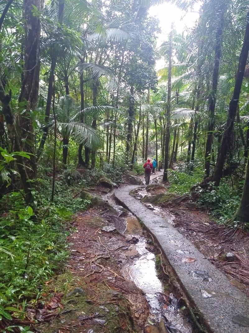 La Mina Trail -133058