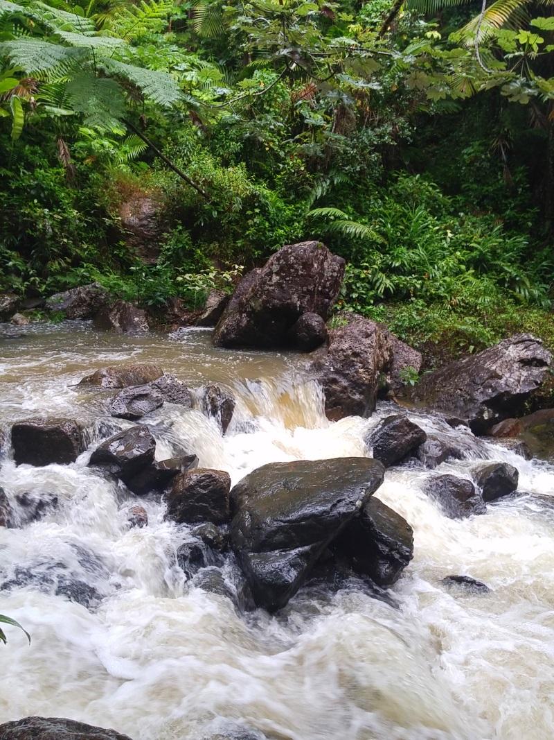 La Mina Trail _133544