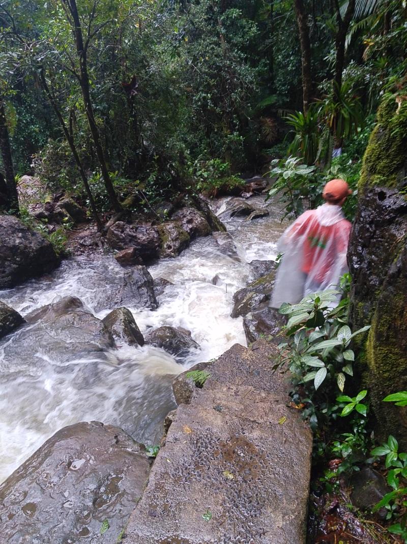 La Mina Trail _133932