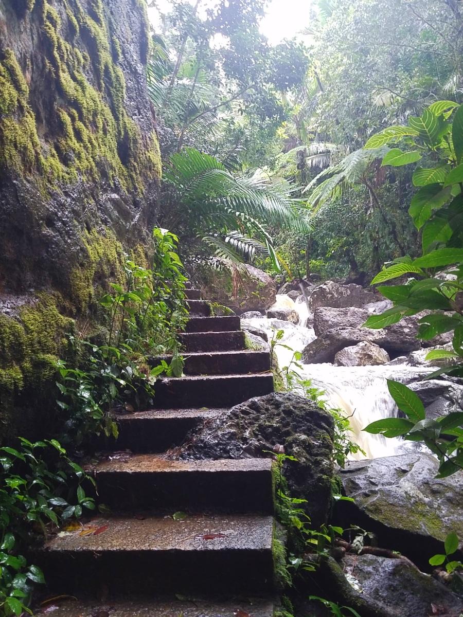 La Mina Trail _134101