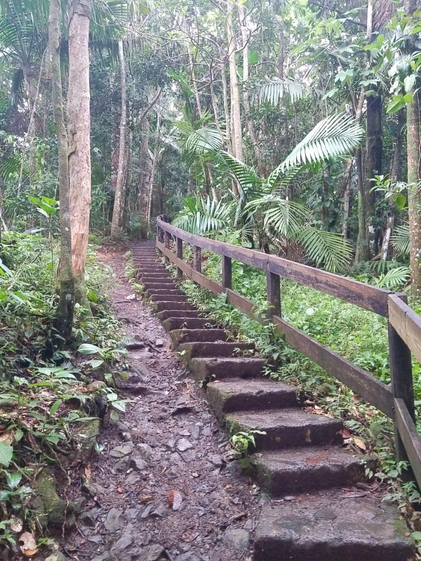 La Mina Trail _153243