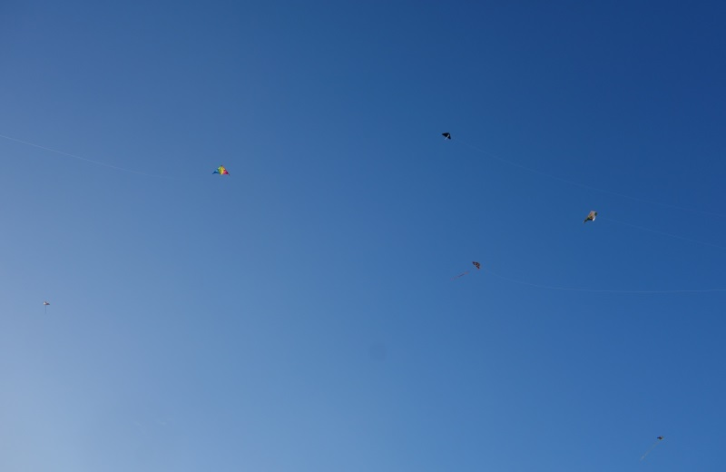 fly a kite Old San Juan-DSC08057