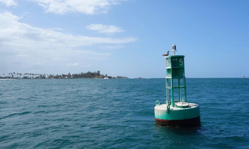 Sailing Puerto Rico-DSC08716