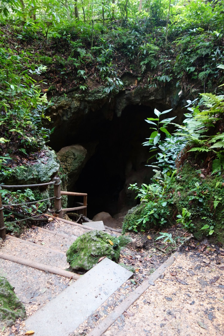 Cueva Ventana Puerto Rico-DSC01399