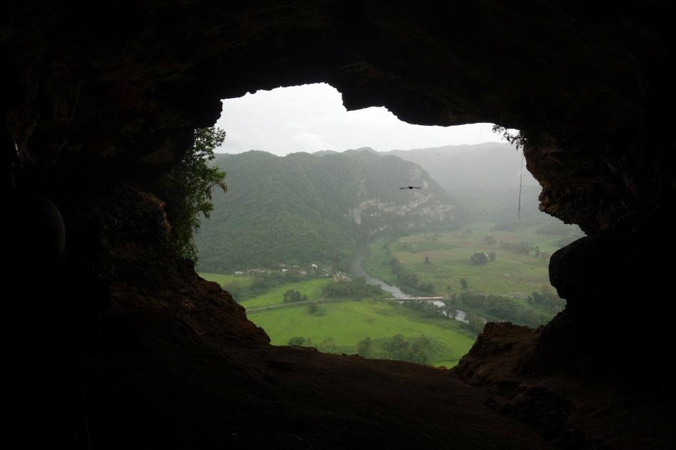Cueva Ventana Puerto Rico-DSC01477