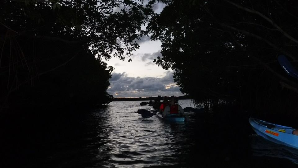 Night Kayaking in Fajardo Puerto Rico-1