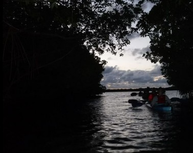 night kayaking fajardo bio bay puerto rico feat
