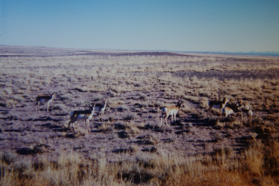 badlands-south-dakota-dsc05226