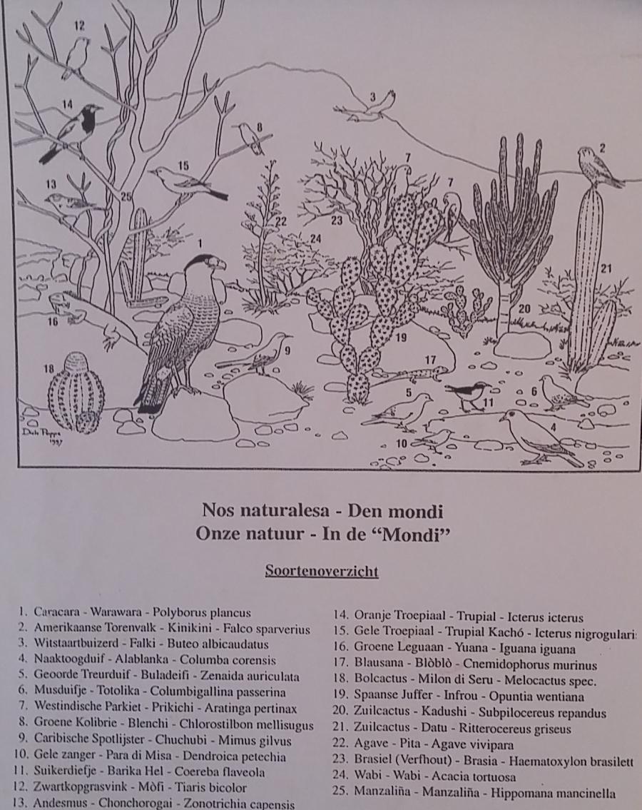 christoffelpark-123448