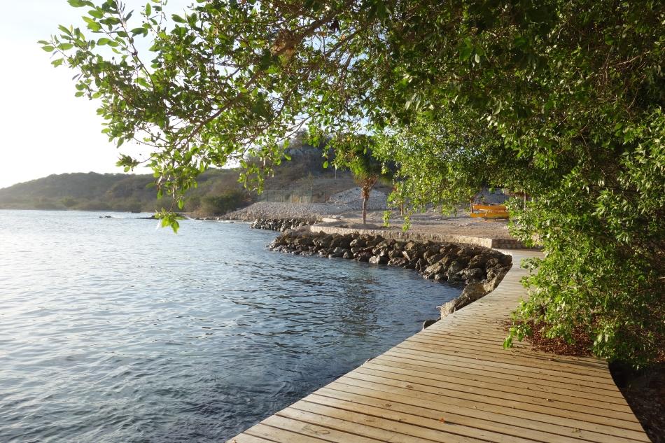 Papagayo Beach-DSC04258