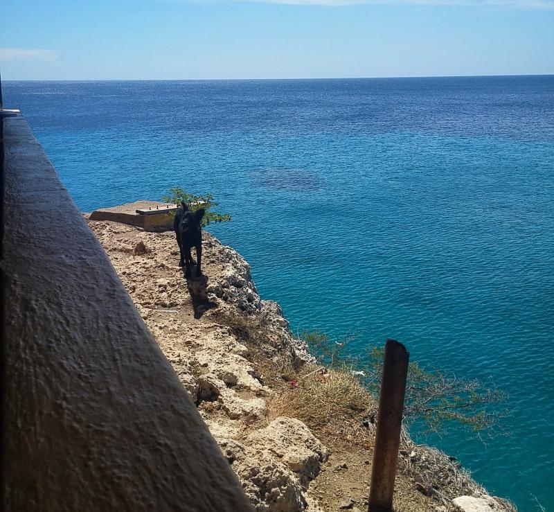 playa-de-forti-110021