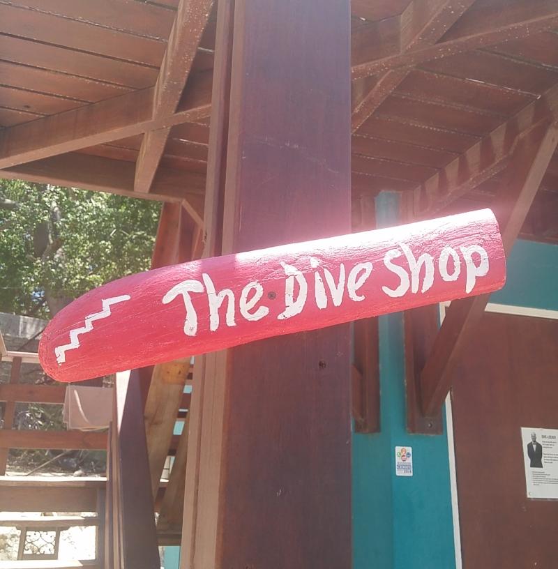 scuba-diving-curacao-125642