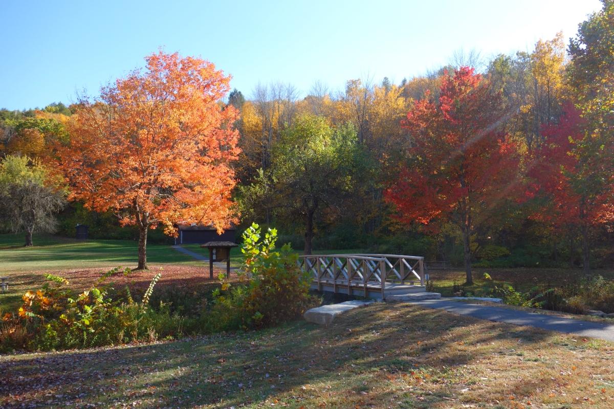 kent-falls-state-park-autumn-fall-2016-dsc09121
