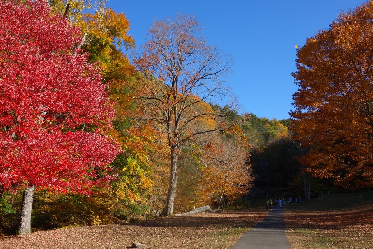 kent-falls-state-park-autumn-fall-2016-dsc09138