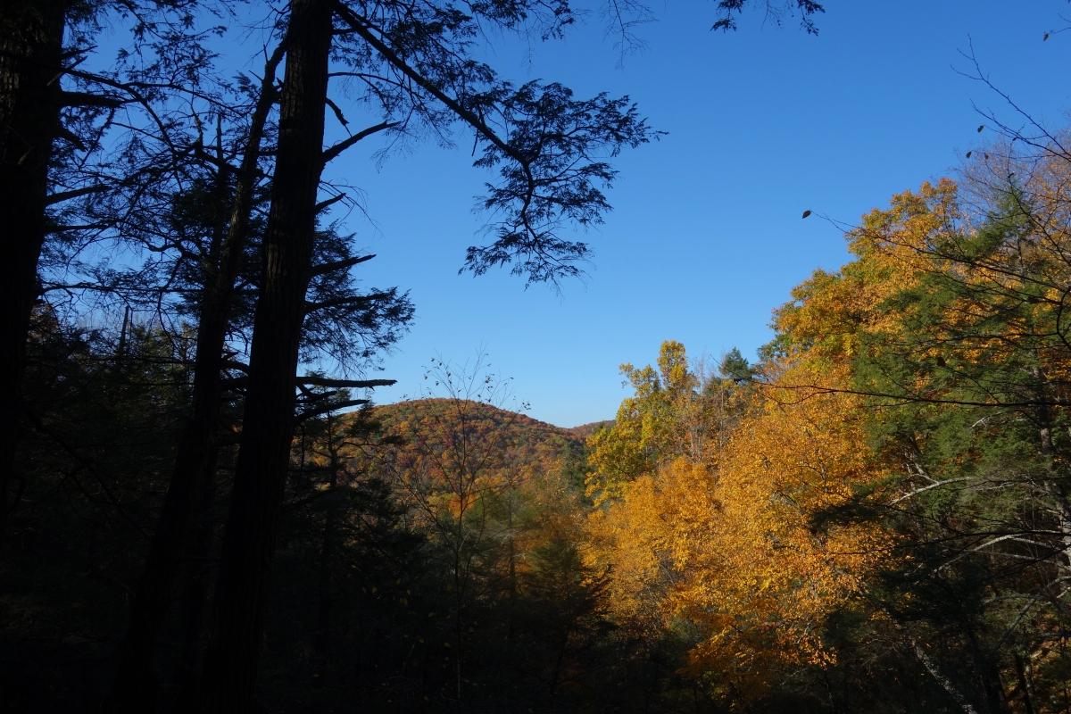 kent-falls-state-park-autumn-fall-2016-dsc09266