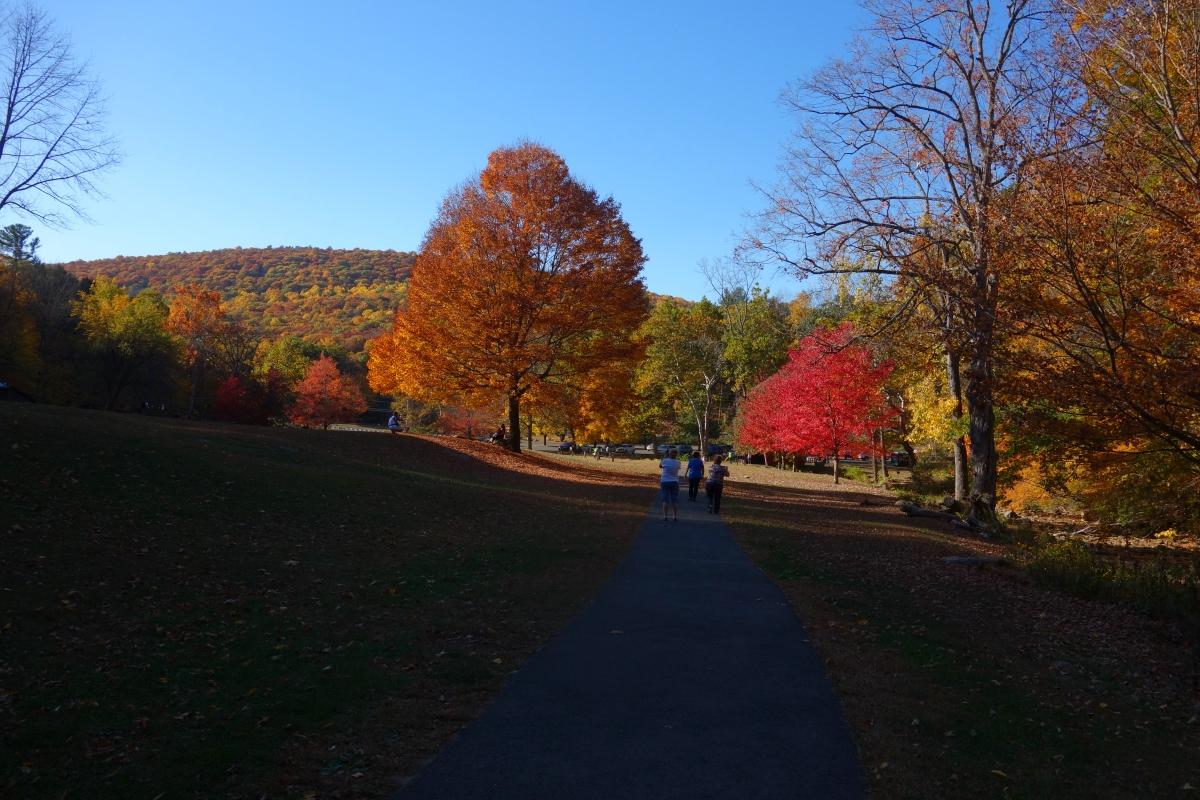 kent-falls-state-park-autumn-fall-2016-dsc09325