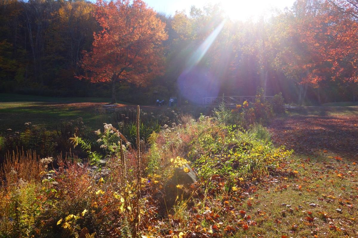 kent-falls-state-park-autumn-fall-2016-dsc09336