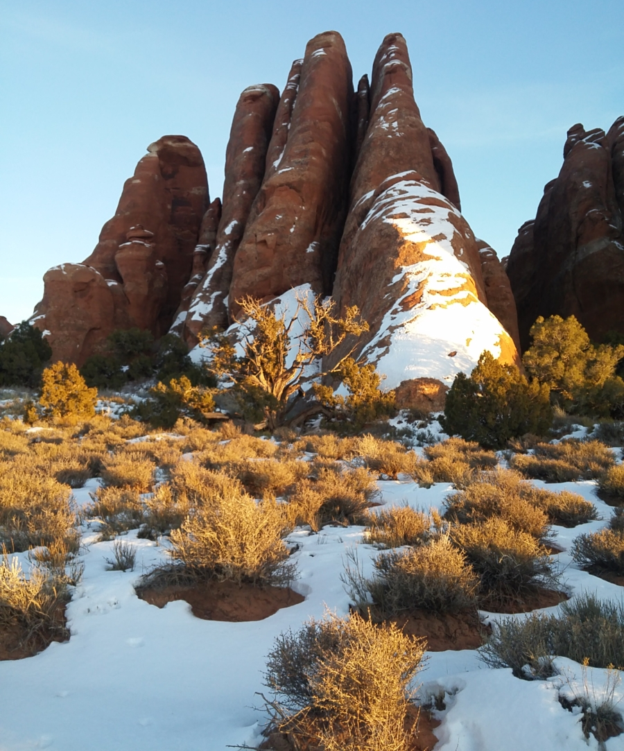 Arches National Park171835