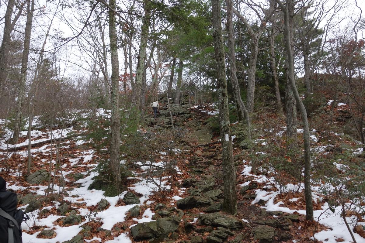 Lions Head Trail to Iron Bridge Hike-DSC04638