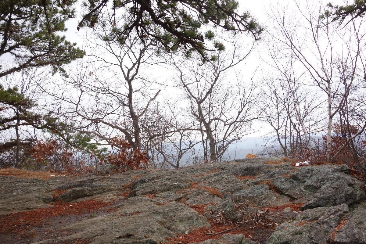 Lions Head Trail to Iron Bridge Hike-DSC04650