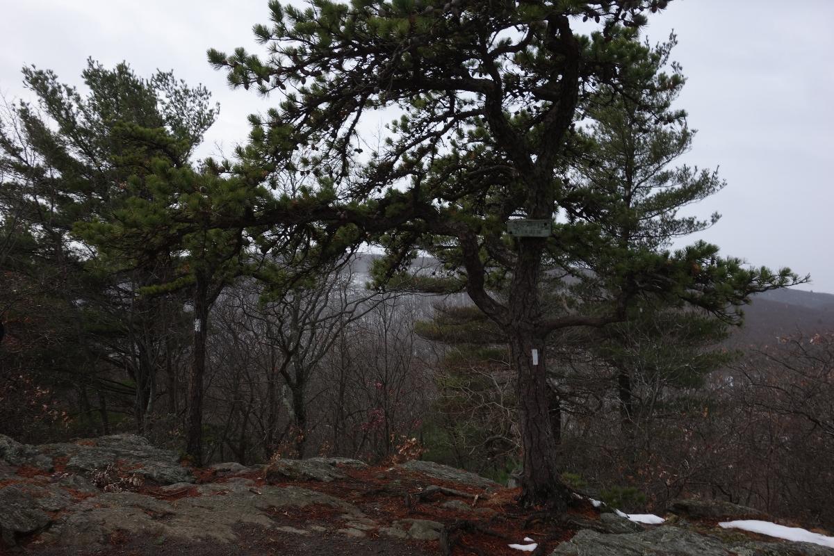 Lions Head Trail to Iron Bridge Hike-DSC04651