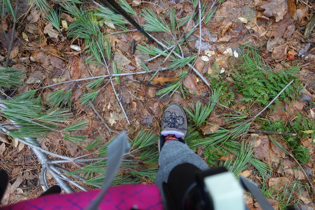 Lions Head Trail to Iron Bridge Hike-DSC04829
