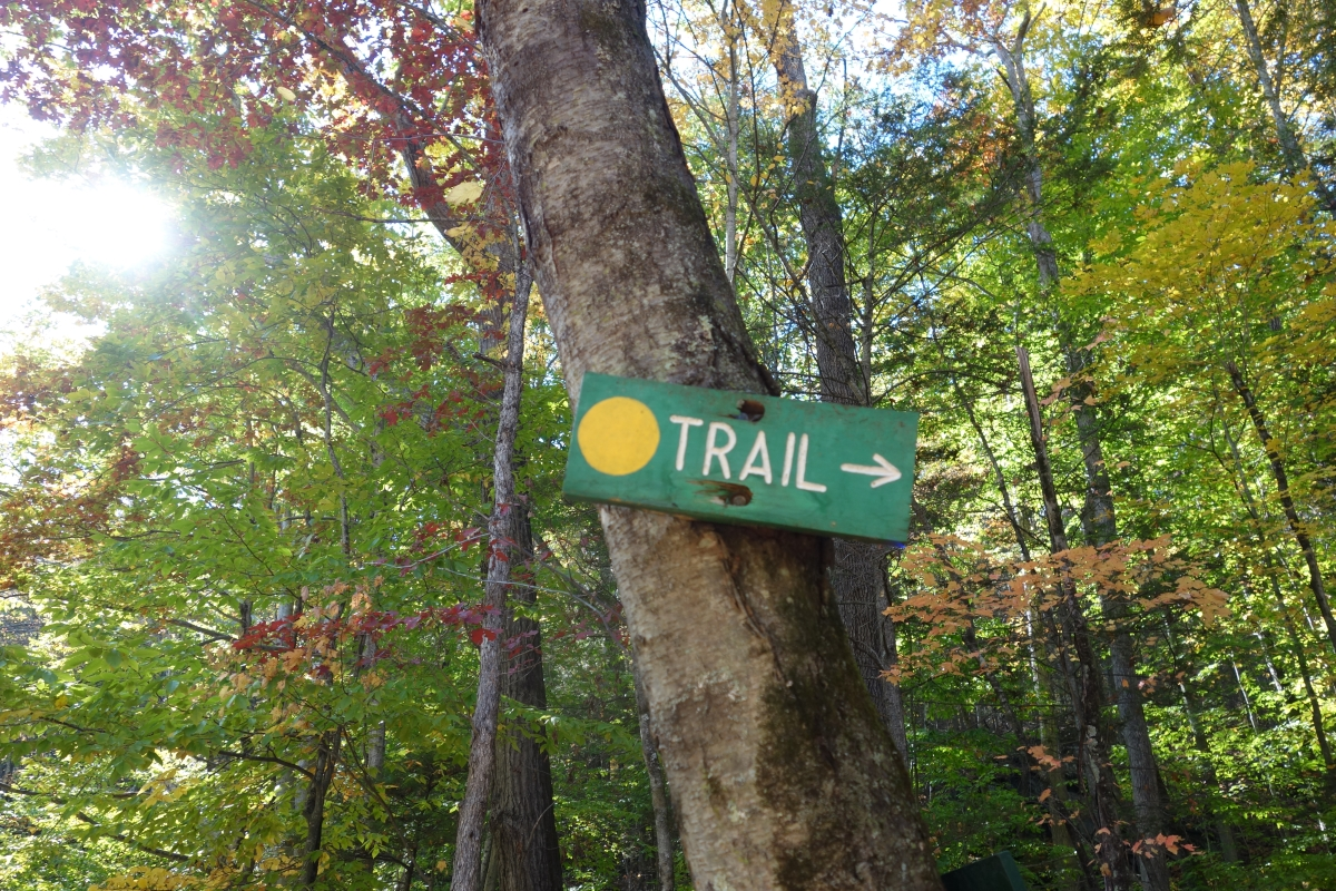 Steep Rock Trail Connecticut Fall 2016-DSC08265