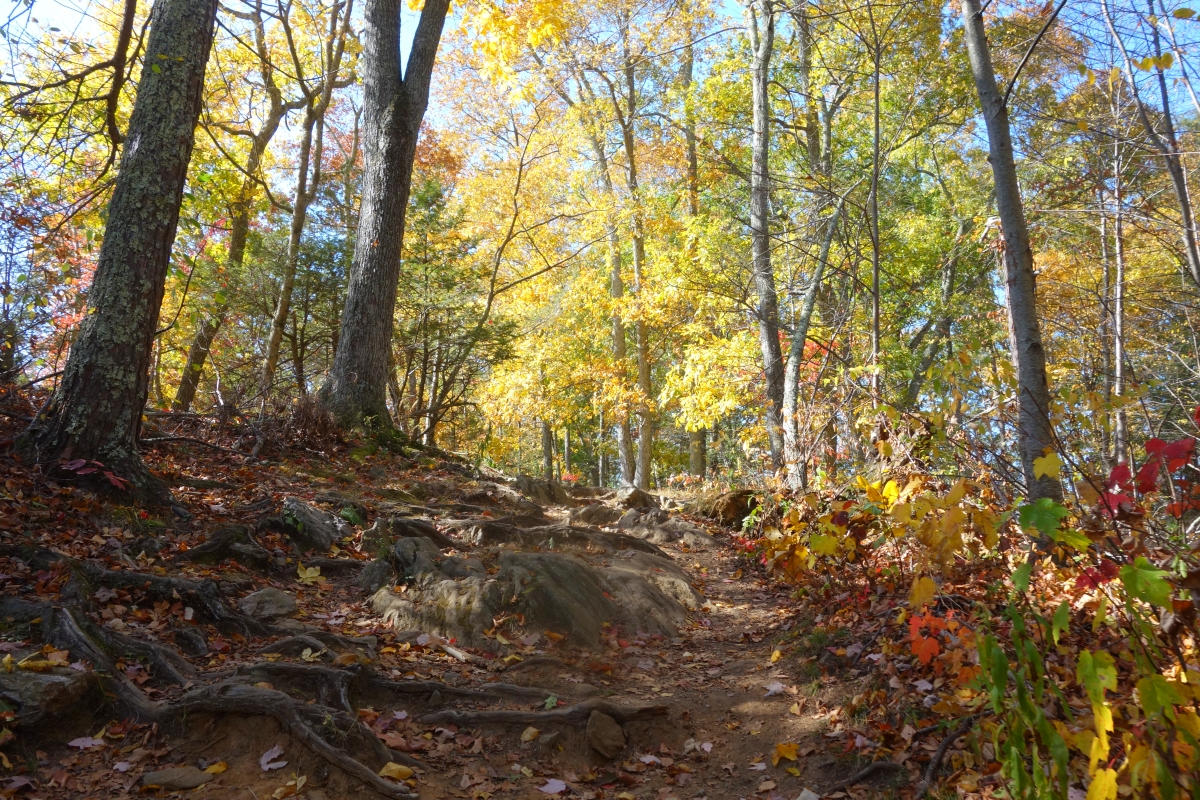 Steep Rock Trail Connecticut Fall 2016-DSC08296