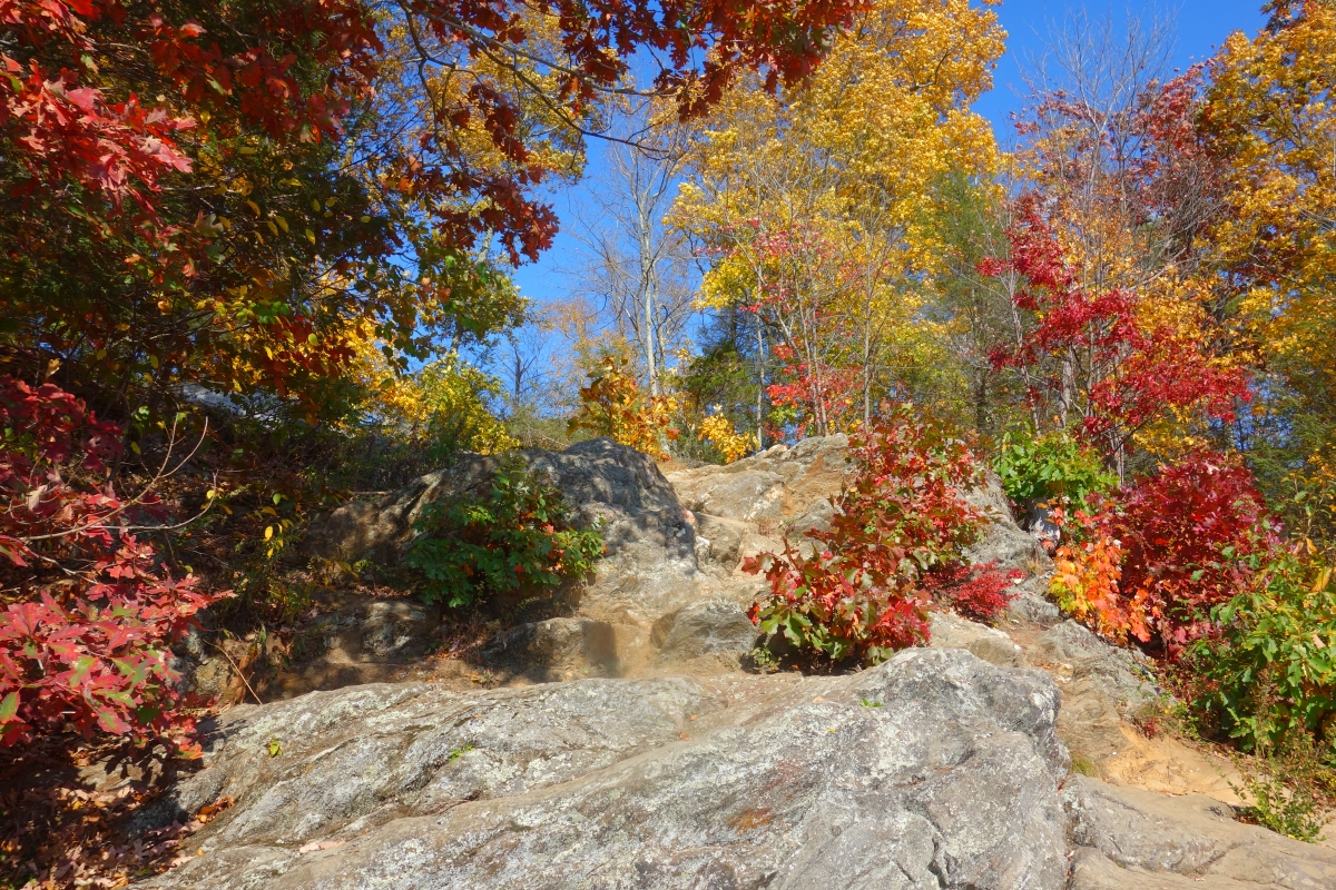 Steep Rock Trail Connecticut Fall 2016-DSC08320