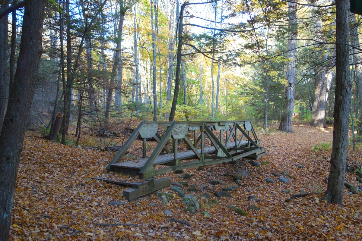 Steep Rock Trail Connecticut Fall 2016-DSC08595