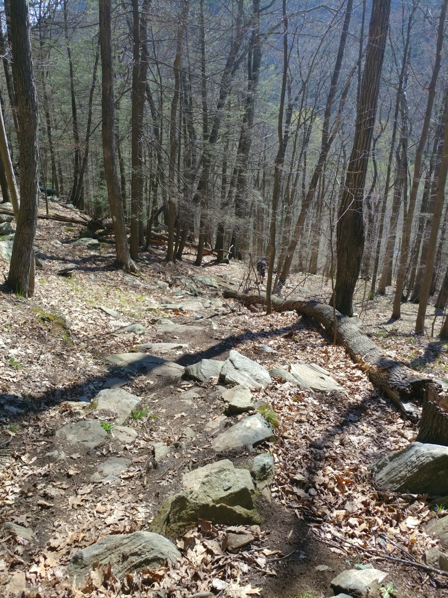 Hiking from River Road to 341150704