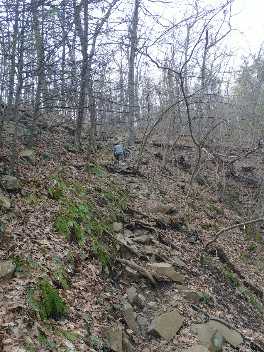 Roaring Brook Falls154720