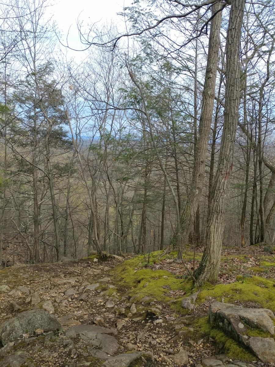Roaring Brook Falls155218