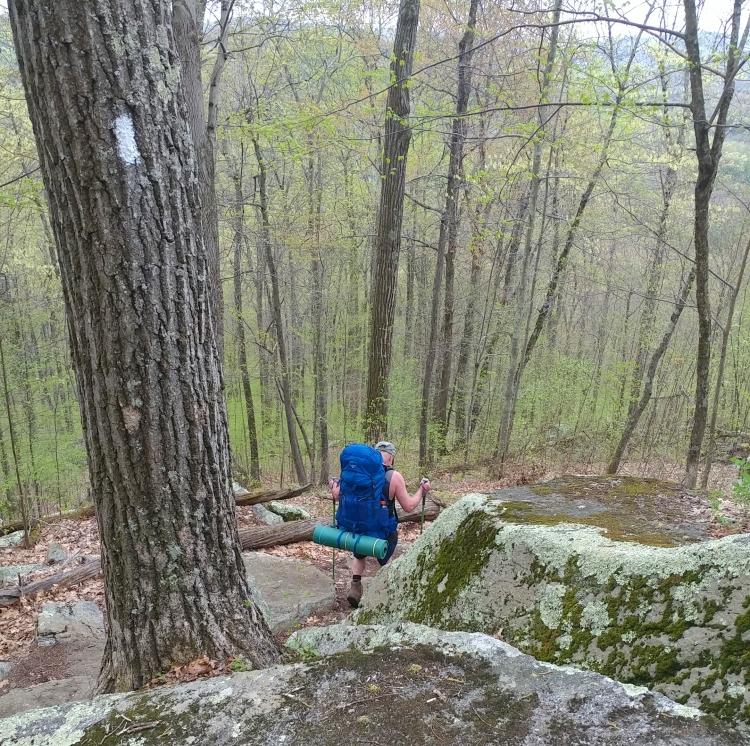 Appalachian Trail 341 to Hoyt Road-143934