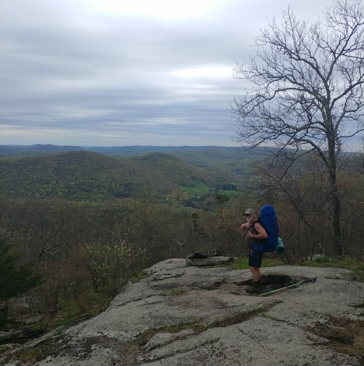 Appalachian Trail 341 to Hoyt Road_133244