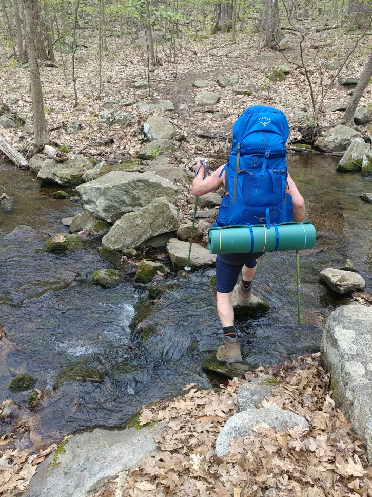 Appalachian Trail 341 to Hoyt_111736a