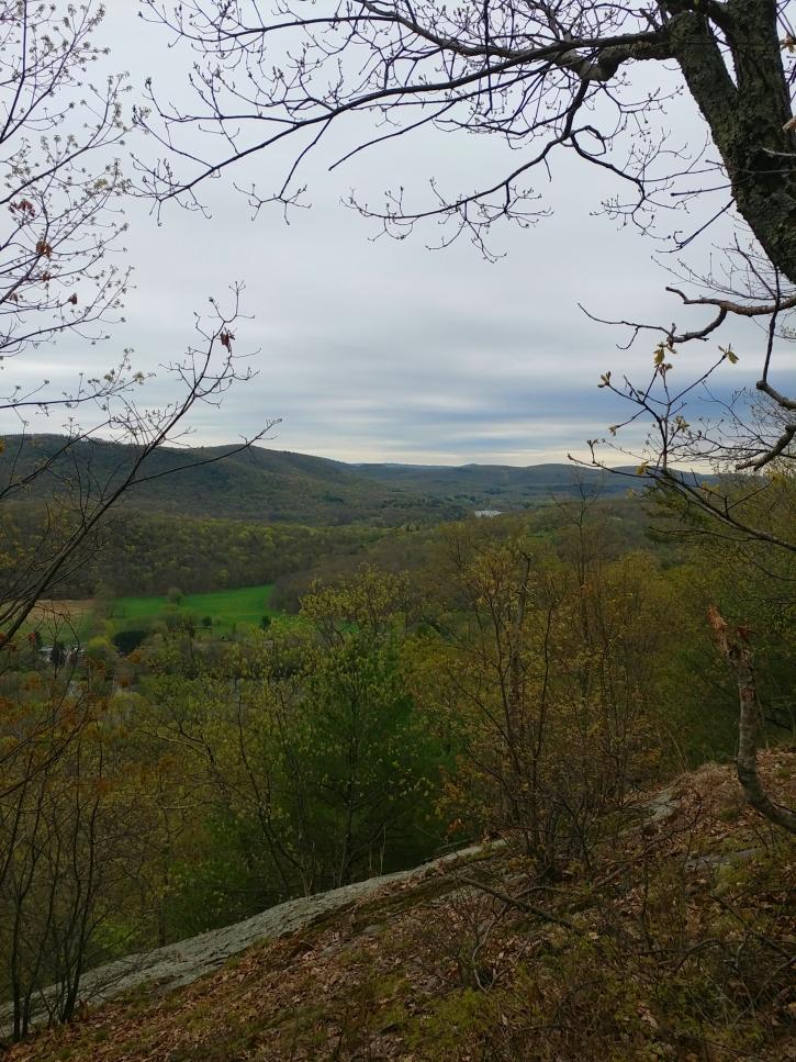 Appalachian Trail 341 to Hoyt_113224